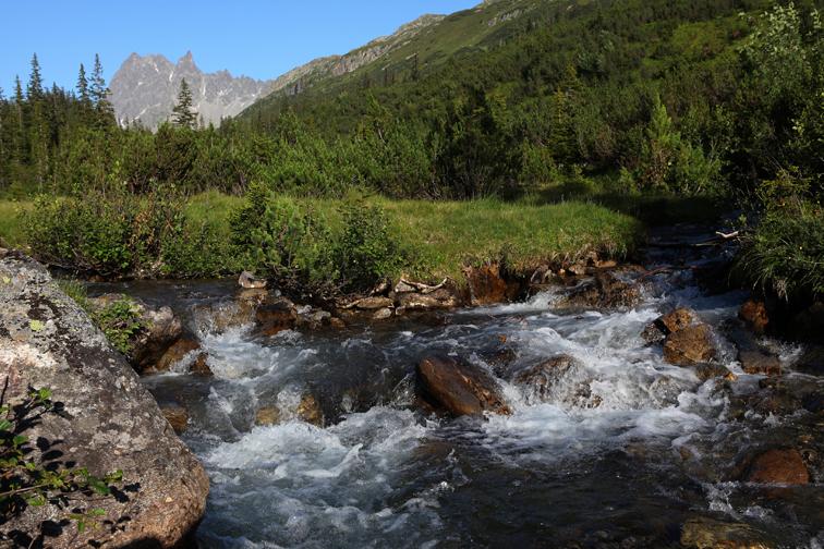 Klares Gebirgsquellwasser im Silbertal im Montafon